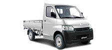 pick-up-gran-max